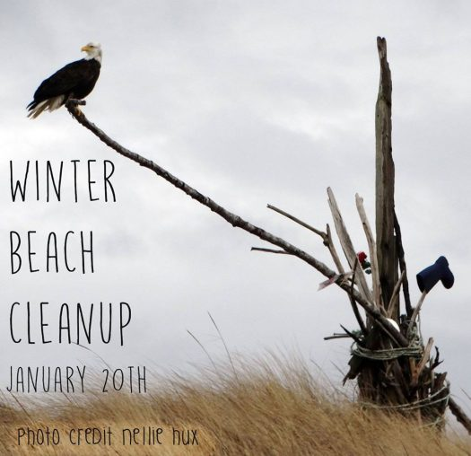 beach cleanup january